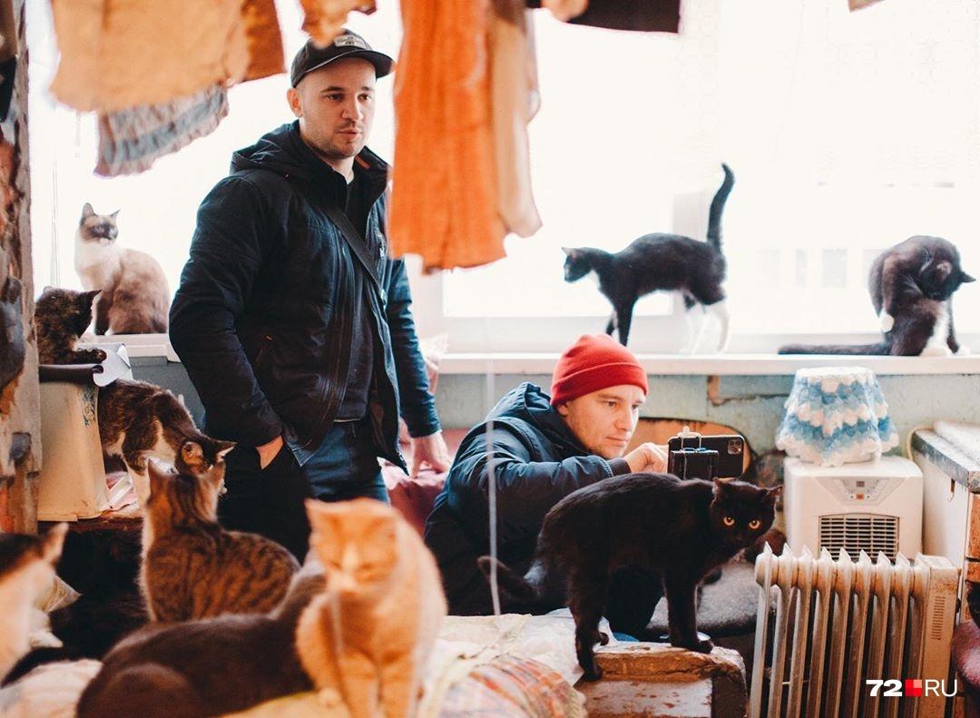Однажды мы наткнулись на армию котов в одной из квартир. Не спрашивайте, на чем я стою на фото