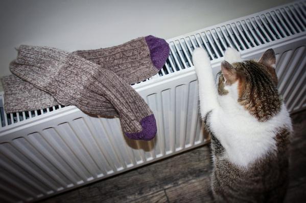 Когда в течение пяти дней среднесуточная температура будет ниже 8 градусов, в дома придет тепло