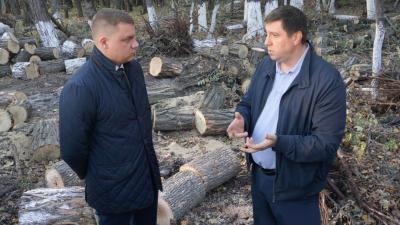 Что происходит в парке на Вересаева: подрядчик заявил, что не нуждается в контроле общественников