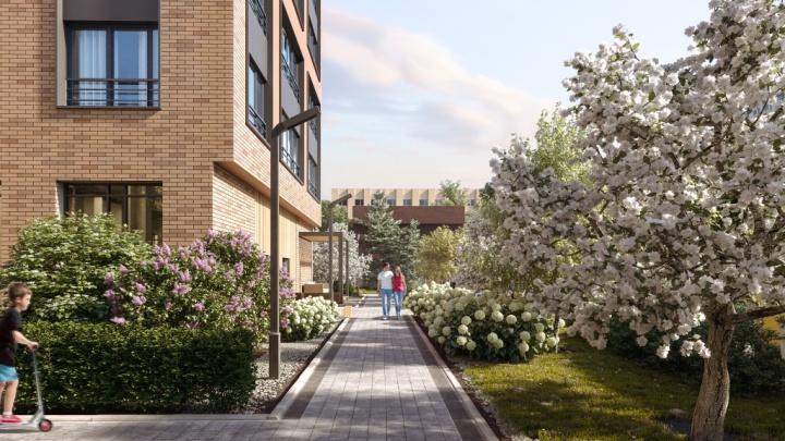 Вся Европа в одном проекте: на Первомайской построят уникальный дом-сад с живыми изгородями