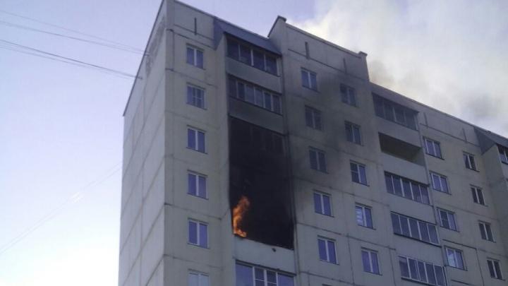На окраине Новосибирска вспыхнула многоэтажка