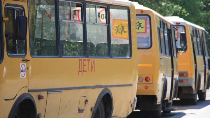 В Ростове хотят создать организацию, контролирующую школьные автобусы