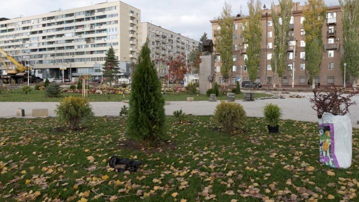 «Тепла не будет»: в Волгоградскую область придёт крепкий ветер и мороз до -13 ºС