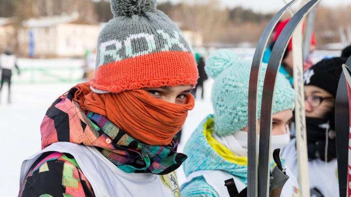 Три тысячи новосибирцев встали на лыжи в Академгородке