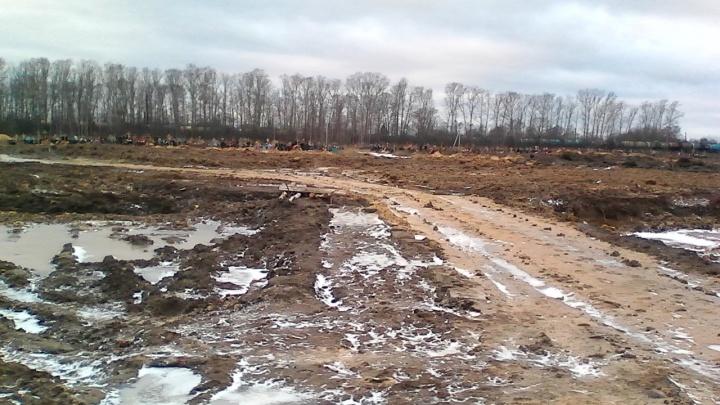 «Плевать на мертвых и живых»: ярославцев возмутил вид Осташинского кладбища