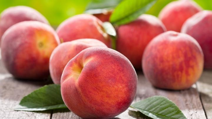 «Выращены под солнцем Крыма»: в Архангельск привезли сочные персики и ароматную малину