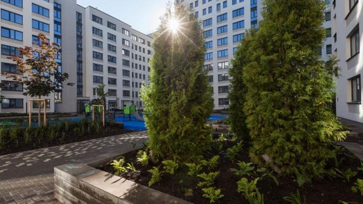 Горы, цветущие сады и тенистые бульвары: как из Уктуса делают европейский город