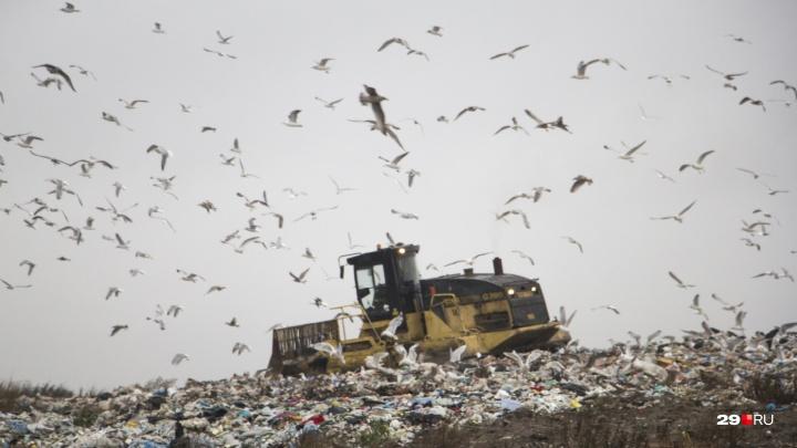 Общественная комиссия рекомендовала разместить межмуниципальный мусорный полигон на 30 километре М-8