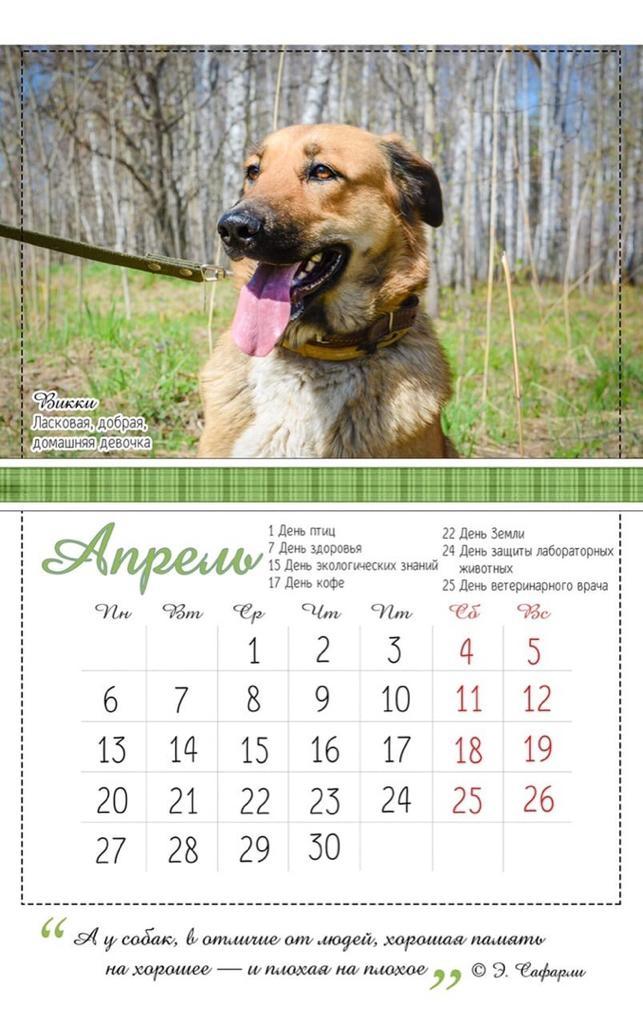 На страницах календаря можно прочитать о характере собак