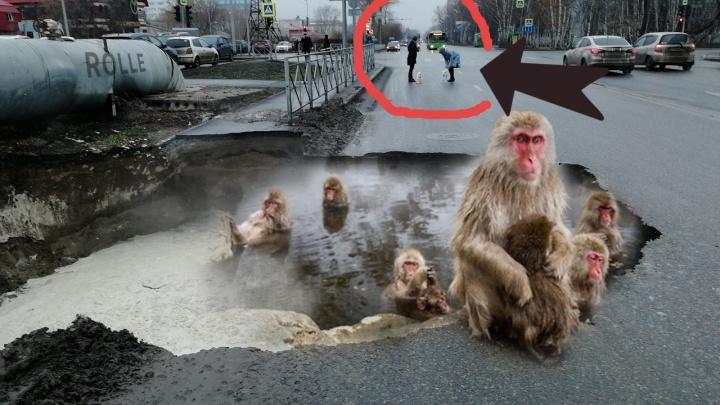 Это полный провал: 7 смешных мемов о гигантской яме на Харьковской