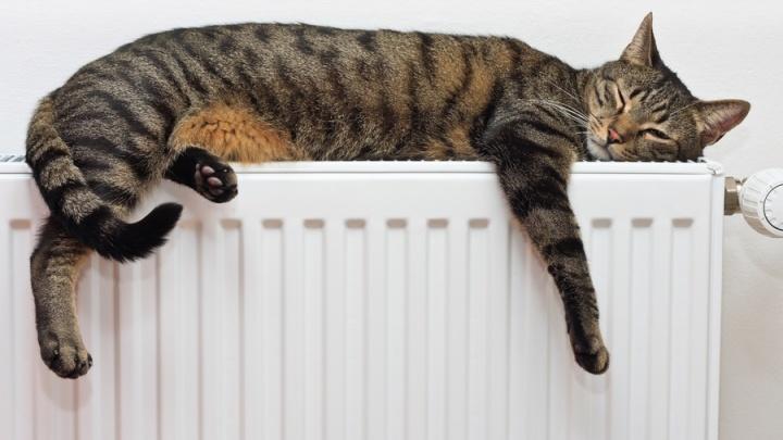 В социальные объекты города начало поступать тепло