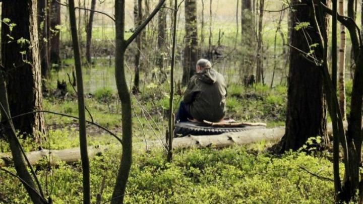 Заблудившийся в ярославских лесах столичный пенсионер прошёл 20 километров