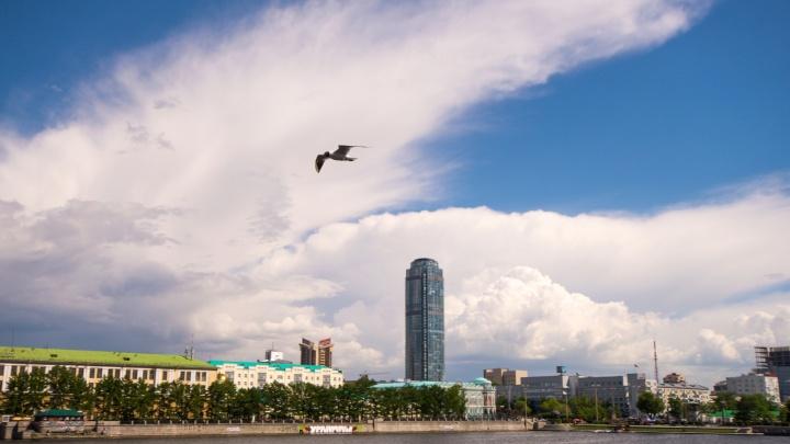 Наслаждаемся остатками лета: конец недели в Екатеринбурге будет теплым и без проливных дождей