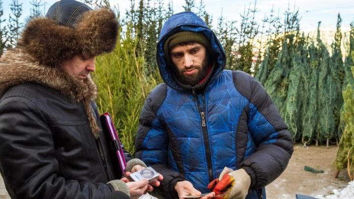 «По любому вопросу — к нам»: на челябинском рынке нашли пять незаконных ёлочных базаров