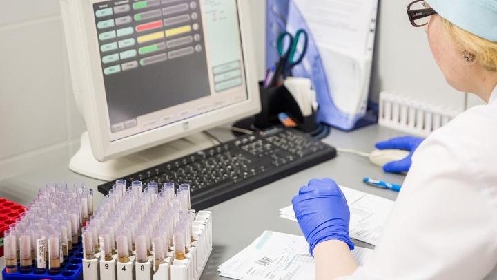 Новосибирские учёные предложили новый способ ранней диагностики рака лёгких