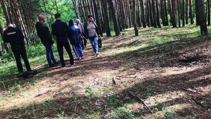 «Похожи на могилы»: тюменцы нашли в Затюменском два десятка одинаковых глубоких ям и вызвали полицию