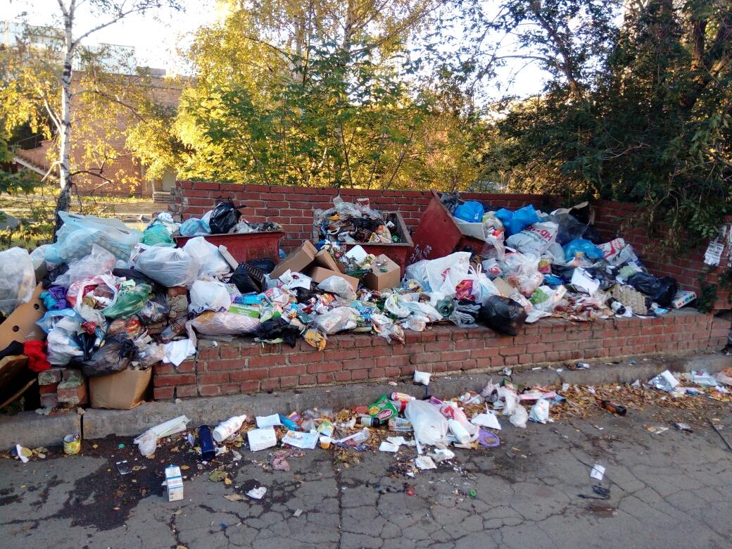 Власти заверяют, что мусор из дворов вывезли, но вот такая картина сегодня утром наблюдается во дворе на Молодогвардейцев, 41а