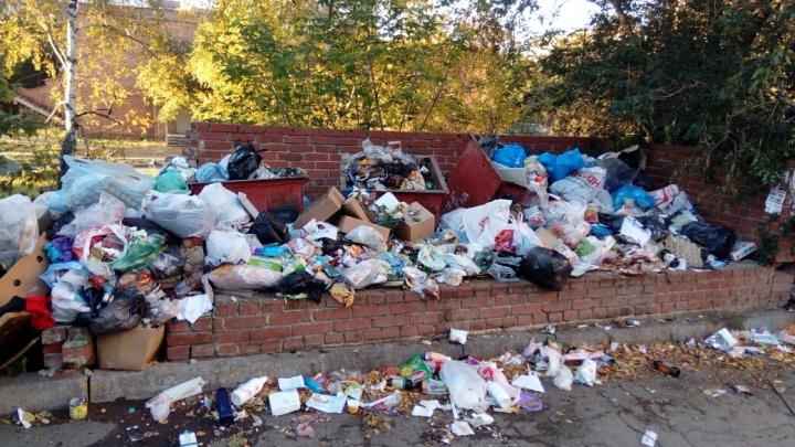 «В связи с напряжённой ситуацией»: с мусорным адом в Челябинске будет разбираться Генпрокуратура
