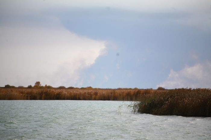 Побережье озера Чаны
