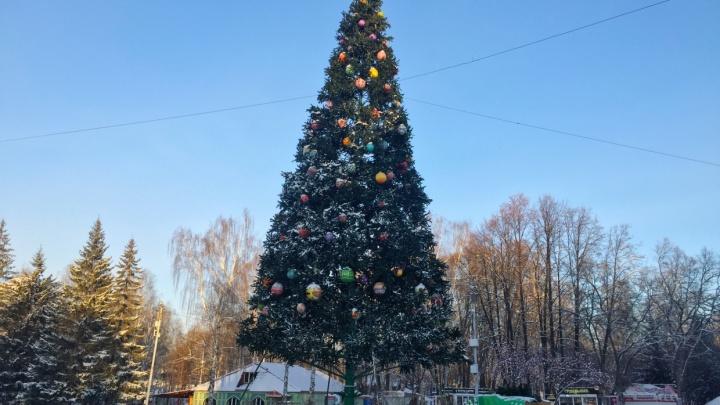 В ЦПКиО прокомментировали информацию о падении с высоты рабочего, украшавшего елку