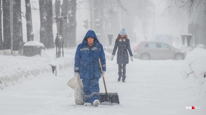 МЧС предупредило жителей Прикамья о сильном ветре
