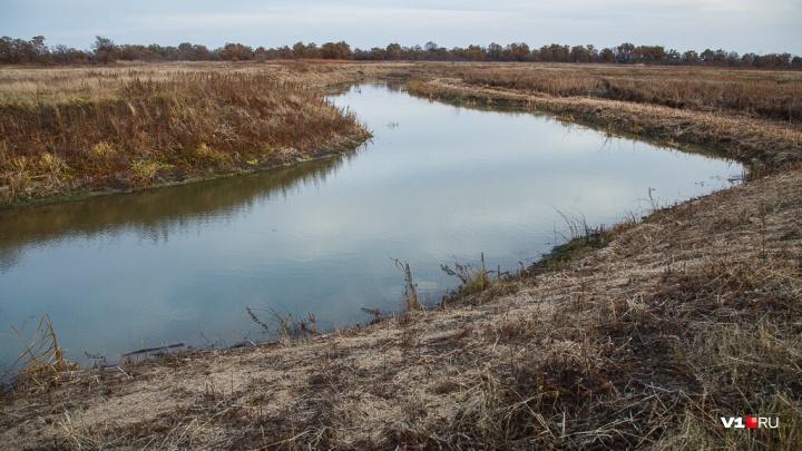 «Еще живого бросили в ледяную реку»: в Жирновске семейная пара жестоко расправилась с должником