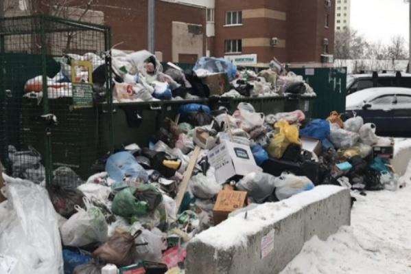 На первых этапах реформы в Самаре были проблемы с вывозом мусора