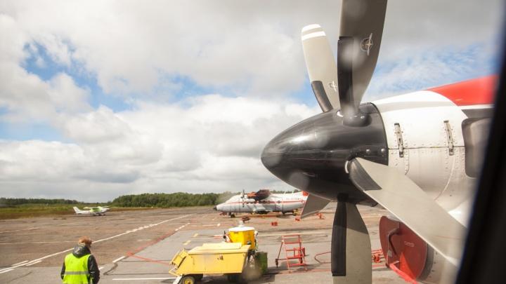 Орнитологическая безопасность и метеорологическое оборудование: на Соловках реконструируют аэропорт