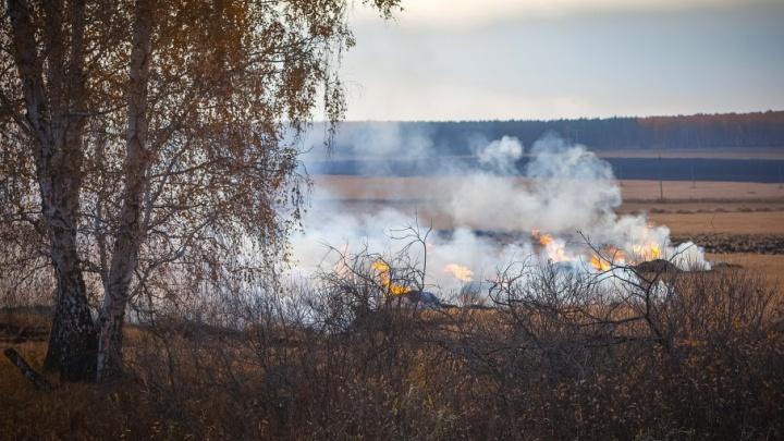 Молились, чтобы пожарные успели: огонь вплотную подошел к домам «Белого хутора»