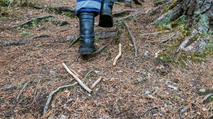 Пожилой охотник оставил товарищей и потерялся в лесу