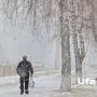 Синоптики прогнозируют снег с дождём в Башкирии