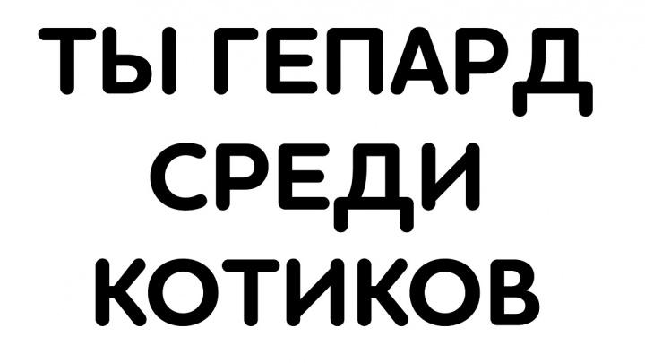 Пять классных плакатов можно получить для болельщиков «Красмарафона «Жара»