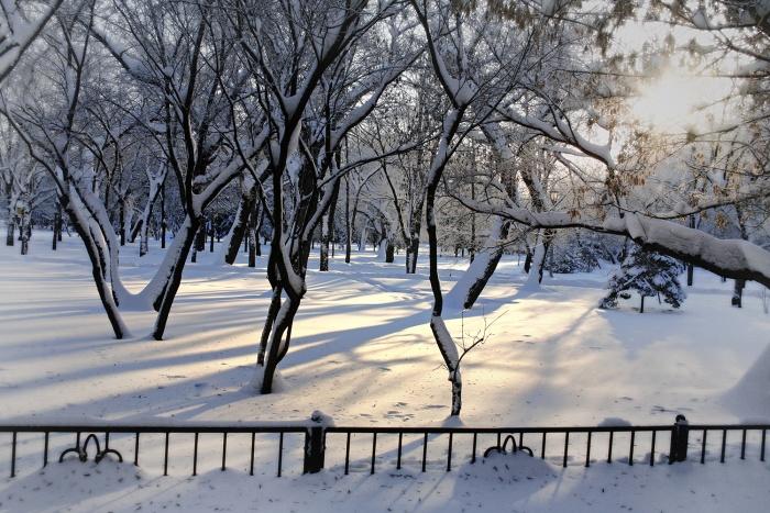 Тёплая погода в Новосибирской области продержится два дня