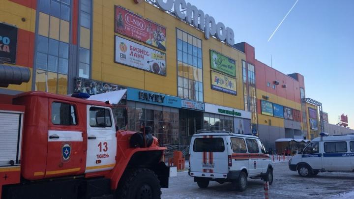 Угрозы минирования, проверки школ, эвакуация ТРЦ «Остров»: смотрим, что происходило в Тюмени