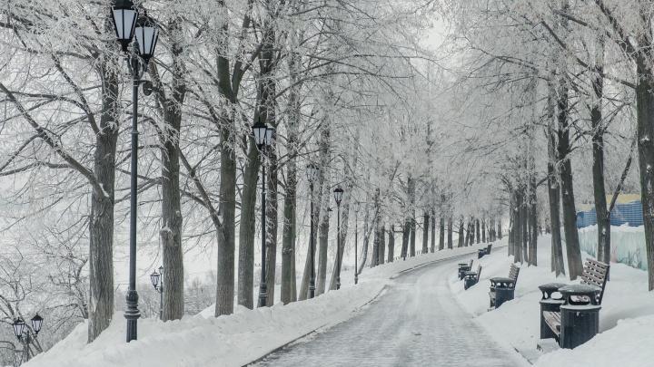 Самый сухой декабрь и отсутствие оттепелей: пермские синоптики подвели климатические итоги зимы