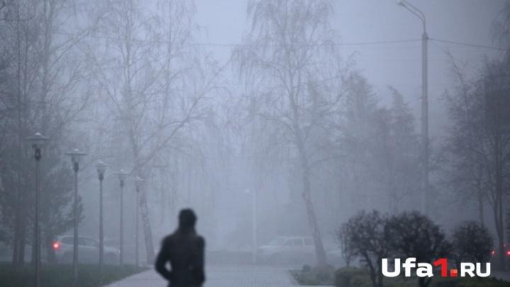 Мокрый снег и туман: синоптики рассказали о погоде в Башкирии на 14 ноября