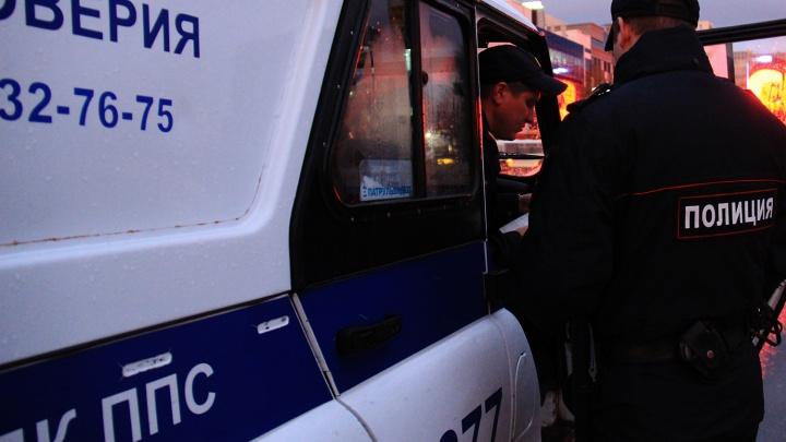 Новосибирский учитель истории покусал и обматерил полицейского