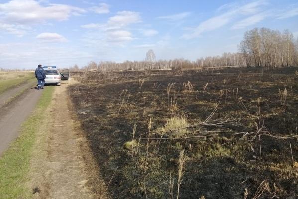Житель села хотел почистить поле, чтобы потом заготовить сено
