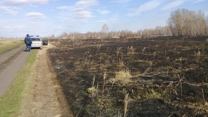 Полицейские задержали южноуральца за поджог сухой травы