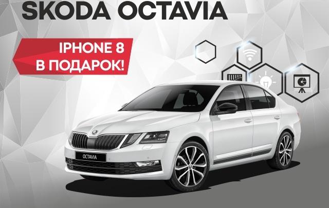 «Медведь-Восток» дарит iPhone 8 при покупке SKODA OCTAVIA