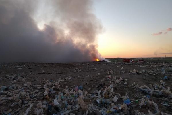 Мусор в этом году горел и в Омске, и во многих районах области. Прокуратура сейчас разбирается с пожаром в Калачинске