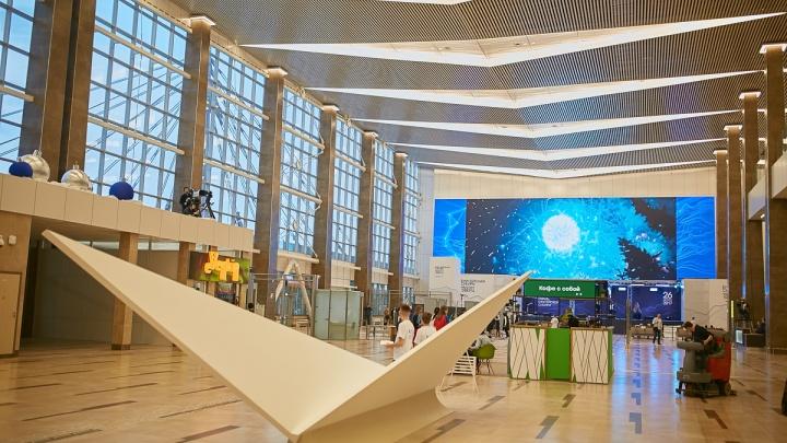 «В честь прадеда»: режиссёр Никита Михалков предложил по-новому назвать аэропорт Красноярска