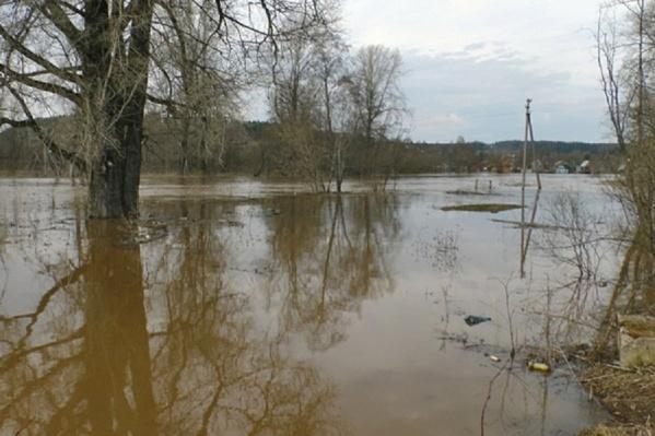 В период с 13 по 15 мая воды в реках Прикамья может стать еще больше
