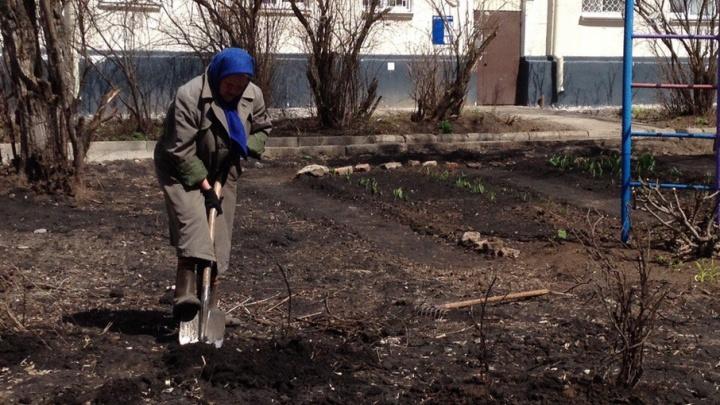 В Уфе 88-летняя бабушка в одиночку восстанавливает разрушенный палисадник