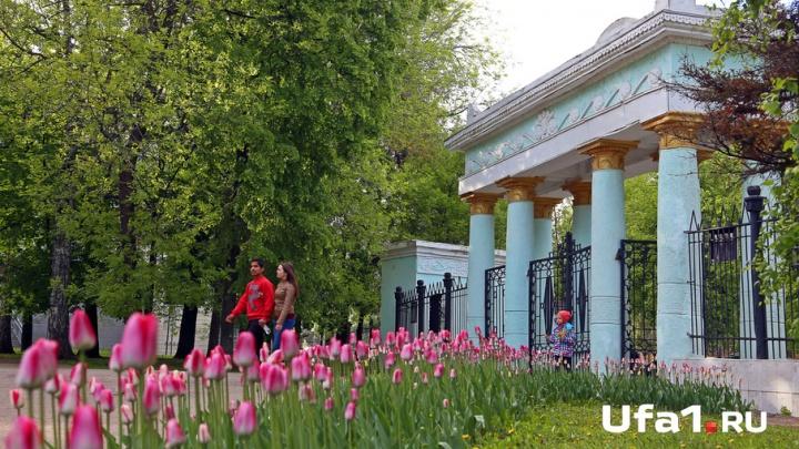 Уфа праздничная: в августе пройдут Дни цветов