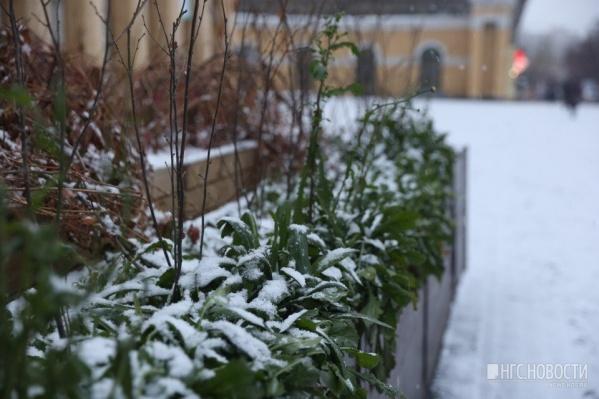 Снег выпал сегодня поздно ночью
