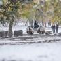 Больше «народных троп»: Дубровский оценил благоустройство сквера на Алом Поле