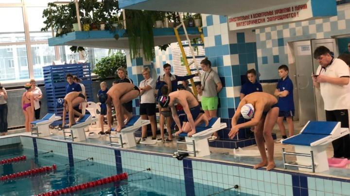 Трое парапловцов представят Поморье на чемпионате России в Краснодаре