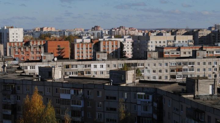 Жилой дом оккупировали крысы: управдом в Ярославле игнорировал просьбы людей о помощи