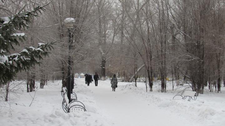 Тридцатиградусные морозы в Зауралье продержатся до конца недели